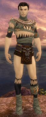 Ritualist Ancient Armor M gray chest feet front