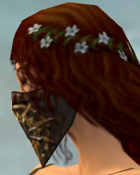 File:Ranger Elite Sunspear Armor F gray head side.jpg