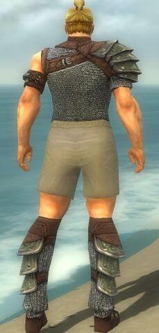 File:Warrior Krytan Armor M gray chest feet back.jpg