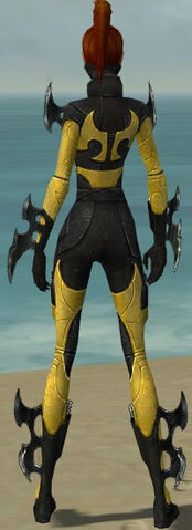 File:Assassin Kurzick Armor F dyed back.jpg