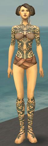 File:Monk Dragon Armor F gray chest feet front.jpg