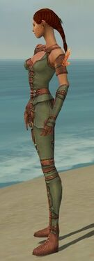 Ranger Ascalon Armor F gray side alternate