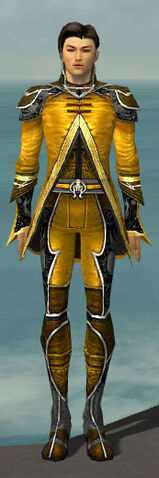 File:Elementalist Shing Jea Armor M dyed front.jpg