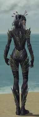 Necromancer Krytan Armor F gray back