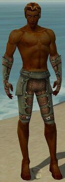 Ranger Ascalon Armor M gray arms legs front