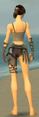 File:Warrior Elite Gladiator Armor F gray arms legs back.jpg