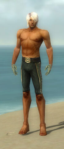 File:Mesmer Elite Canthan Armor M gray arms legs front.jpg