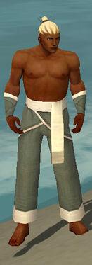 Monk Ascalon Armor M gray arms legs front