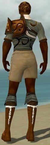 File:Ranger Canthan Armor M gray chest feet back.jpg