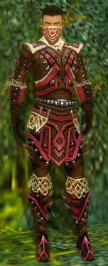 Ranger Elite Kurzick Armor M dyed front