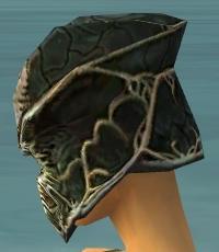 File:Warrior Elite Luxon Armor F gray head side.jpg