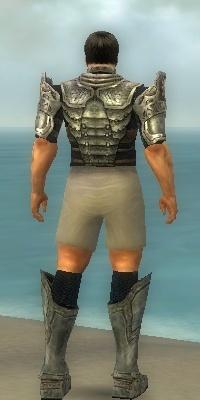 File:Warrior Sunspear Armor M gray chest feet back.jpg