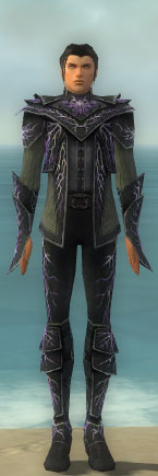 File:Elementalist Ascended Aeromancer's M gray front.jpg