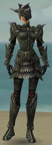File:Warrior Wyvern Armor F gray front.jpg