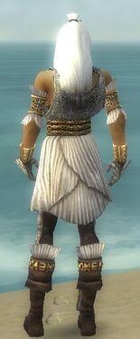 Elementalist Elite Sunspear Armor M dyed back