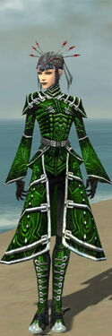 Necromancer Fanatic Armor F dyed front