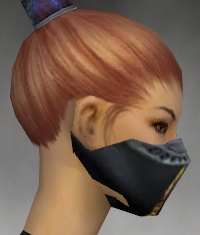 File:Assassin Exotic Armor F gray head side.jpg
