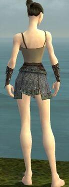 Warrior Tyrian Armor F gray arms legs back