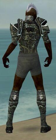 File:Necromancer Fanatic Armor M gray chest feet back.jpg