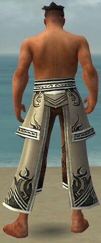 File:Aureate Pants M gray back.jpg