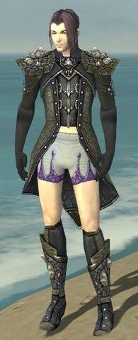 File:Elementalist Elite Stoneforged Armor M gray chest feet front.jpg