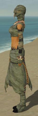 File:Ritualist Ancient Armor F gray side.jpg