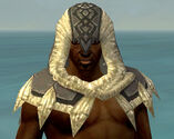 Dervish Norn Armor M gray head front