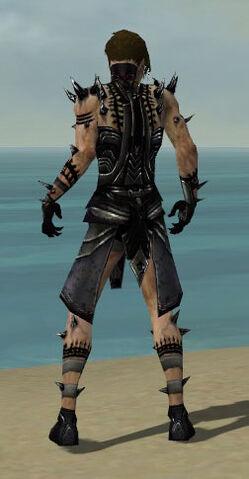File:Necromancer Obsidian Armor M dyed back.jpg