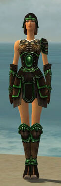 Warrior Shing Jea Armor F dyed front