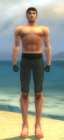 File:Mesmer Elite Enchanter Armor M gray arms legs front.jpg
