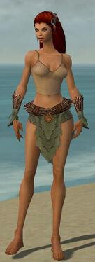 Ranger Elite Druid Armor F gray arms legs front