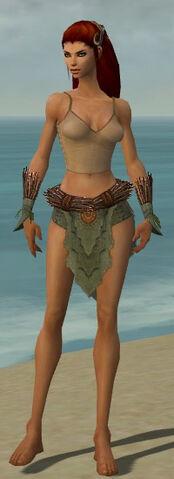 File:Ranger Elite Druid Armor F gray arms legs front.jpg