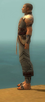 File:Monk Asuran Armor M gray side.jpg