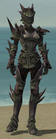 File:Warrior Primeval Armor F gray front.jpg