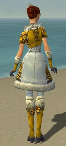 File:Elementalist Norn Armor F dyed back.jpg