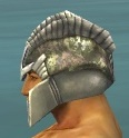 File:Warrior Templar Armor M gray head side.jpg