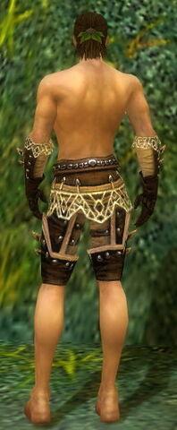 File:Ranger Elite Kurzick Armor M gray arms legs back.jpg
