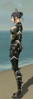 Necromancer Kurzick Armor F gray side