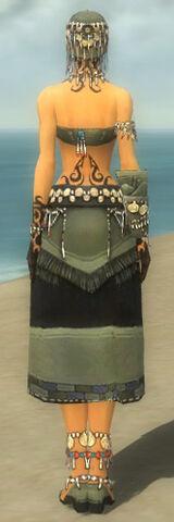 File:Ritualist Luxon Armor F gray back.jpg