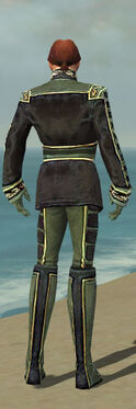 Mesmer Canthan Armor M gray back