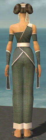 File:Monk Ascalon Armor F gray back.jpg