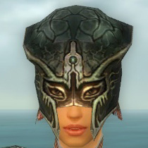File:Warrior Luxon Armor F gray head front.jpg