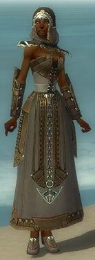 Dervish Asuran Armor F gray front