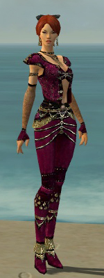 File:Mesmer Elite Luxon Armor F dyed front.jpg
