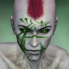File:Necromancer Elite Kurzick Armor M dyed head front.jpg