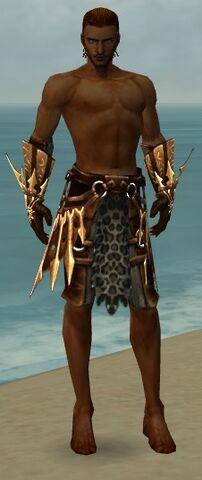File:Ranger Elite Sunspear Armor M gray arms legs front.jpg