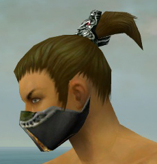 File:Assassin Exotic Armor M dyed head side.jpg