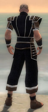 Monk Elite Judge Armor M dyed back