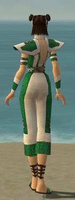 File:Monk Elite Saintly Armor F dyed back.jpg