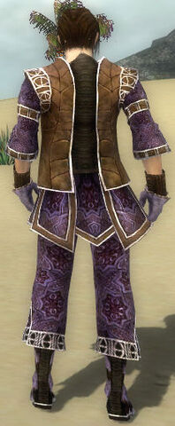File:Acolyte Sousuke Armor DajkahInlet Back.jpg